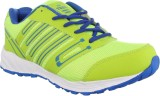TREX Running Shoes (Multicolor)