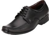 CK Shoes Lace Up Shoes (Black)