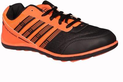 Hitcolus Orange & Black Casuals