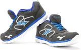 Elligator Running Shoes (Grey, Blue)