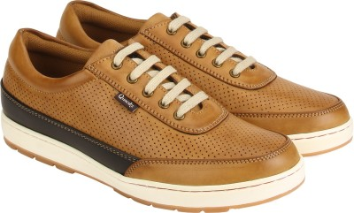 Quarks Casuals(Tan)