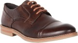 Toni Rossi Oxford Lace Up (Brown)