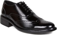 Bruno Manetti 4001 Slip On Shoes(Black)