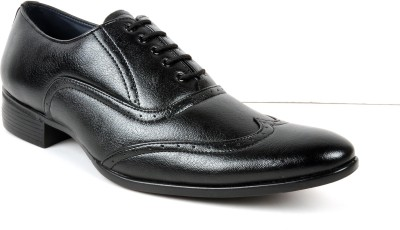Toruzzi Designer Brogue Shoe Lace Up Shoes