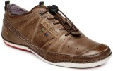 Buckaroo Casuals (Brown)