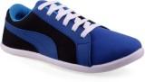 Scoria R-3 Casuals (Blue)