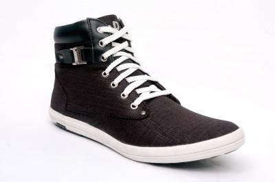 Affix Aviator Sneakers