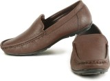 Calaso 2121 Brown Loafers (Brown)