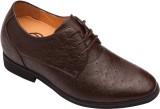 Dvano Shoes DFM105-2D Corporate Casuals ...