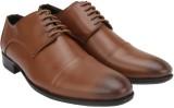 Brigit Derby Shoes Brown Lace Up (Brown)