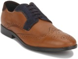 Arden Oliver Tritone Derby Lace Up (Tan,...