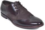 M & M Party Wear Shoes (Brown)