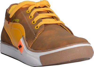 DK Shoes Casuals