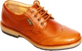Haven Party Wear Shoes (Brown)