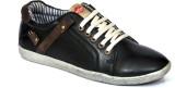 BC Sneakers (Black)