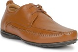 Foxx Seven Corporate Casuals (Brown)