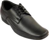 Portland Lace Up Shoes