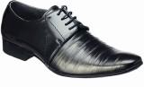 Pelle Albero 5033 Black Party Wear (Blac...