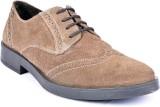 Lemon & Vodka Casual Shoes (Brown)