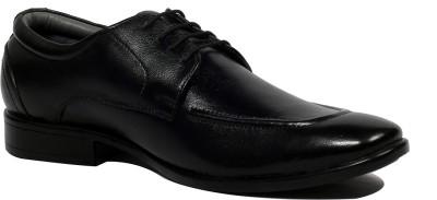 Allen Cooper 2906 Lace Up Shoes