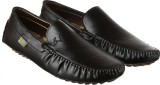 Brandvilla Loafers (Black)
