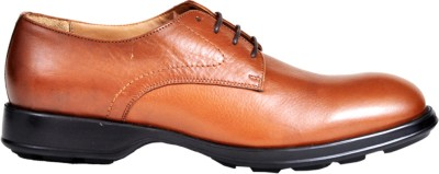 Pinellii Orionis Tan Lace Up Shoes