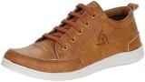Argentina Shoes Canvas Shoes, Casuals, P...