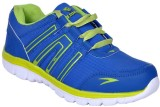 Glamour Training & Gym Shoes (Blue)