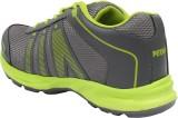 Perrari M40 Training & Gym Shoes (Grey, ...