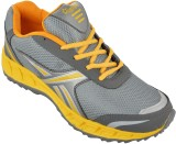 Porcupine Running Shoes (Grey)