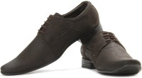 Lee Cooper Men Genuine Leather Corporate Casuals(Brown)