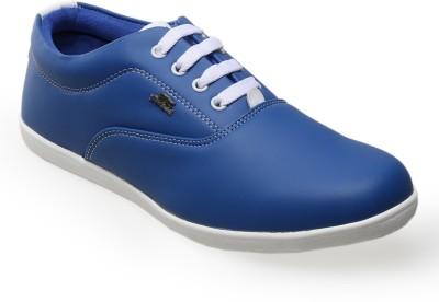 CatBird Casual Shoes