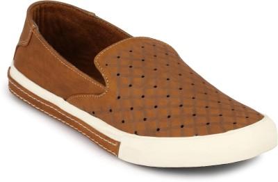 Brown Sugar Sneakers