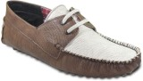 Ten Funky and Stylish Driving Shoes (Bro...