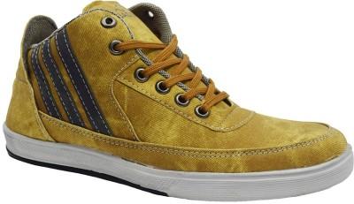 Jk Port Jkpbgbeg5cs Canvas Shoes