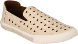 Brown Sugar Pattern Casual Shoes (White)