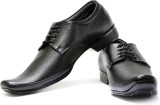 Albert & James Formal Shoes Lace Up (Bla...