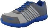Poddar Vipod Cricket Shoes (Grey)