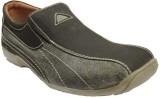 Pietro Carlini Royal Vintage Casual Shoe...