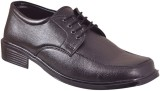 Krafter Lace Up Shoes (Black)