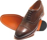 Churchill & Company Lace Up (Brown)