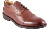 Tred Flex Mens Lace Up Shoes (Brown)