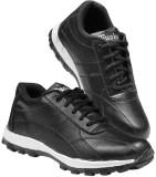 Fuoko Ozone Walking Shoes (Black)