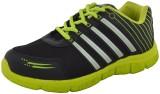 Poddar Vipod Cricket Shoes (Black, Green...