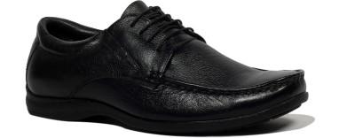 Allen Cooper 4602 Lace Up Shoes