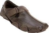 Mori Leather Driving Shoes (Brown)