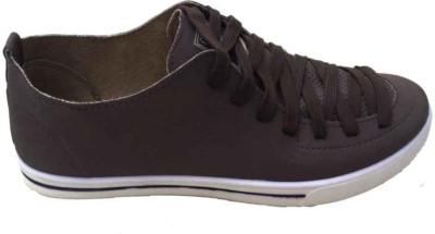StyleToss Brown Sneakers