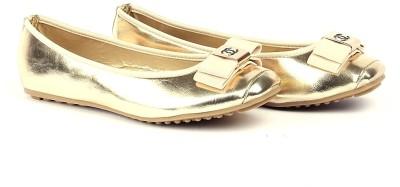 Silver Tulip Flat Bellies(Gold)