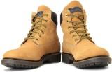 GAS Pulsar Men Boots (Camel)