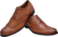 Hirel's Tan Stylish Brogues Lace Up Shoes(Tan)